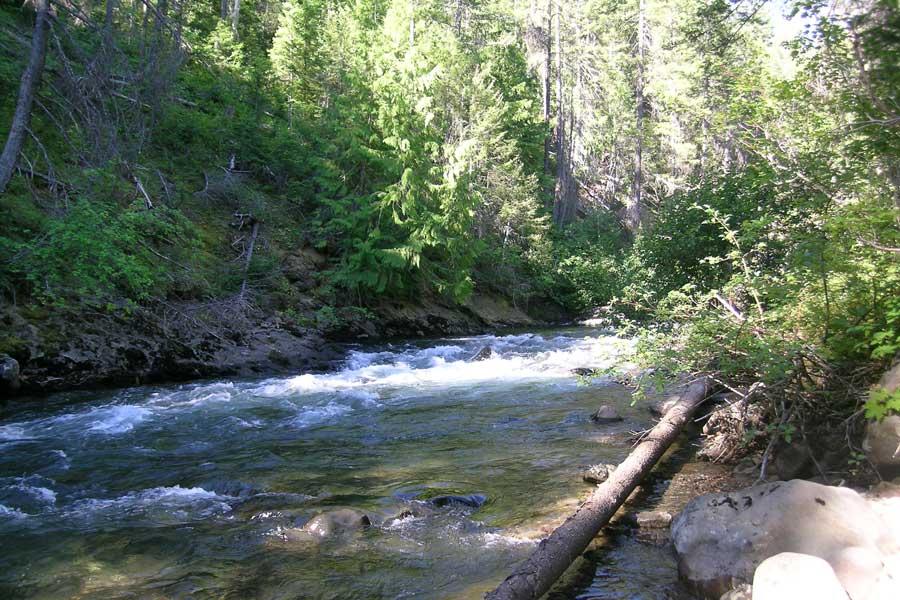 Cascade Mountain River